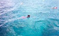 Folkestone Underwater